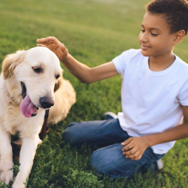 Canine Assisted Psychotherapy with Adolescents (1 CE)