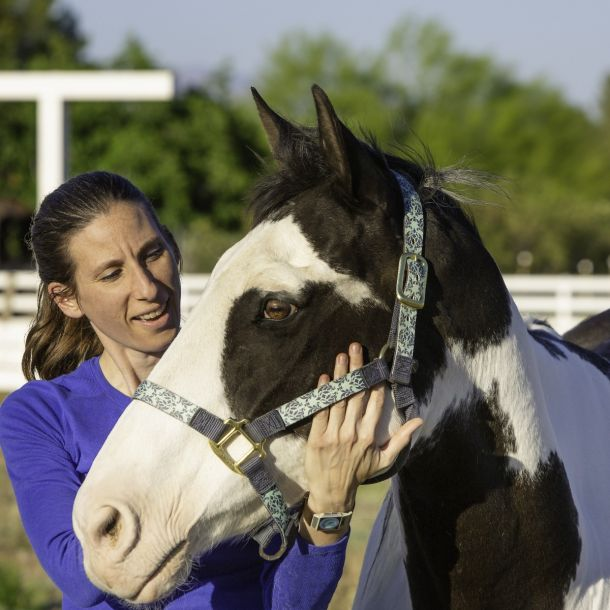 Equine-Assisted Interventions for Neurological Disorder Treatment (2 CE)