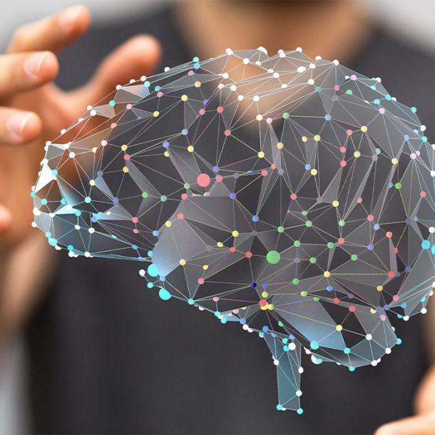 Understanding the Effects of Maltreatment on Brain Development (1 CE)
